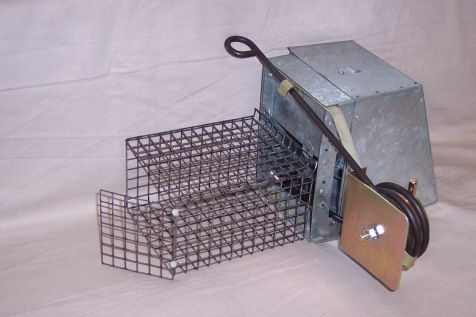 Kania 2000 Trap for Grey Squirrel Control